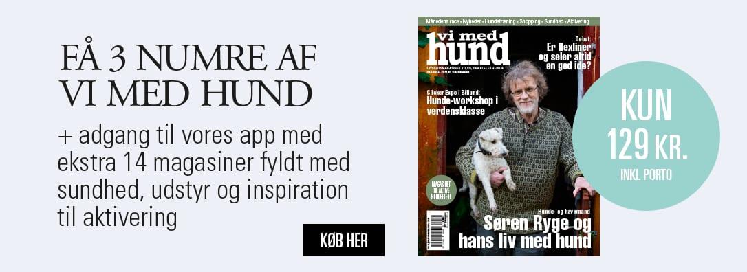 Vi med hund magasinet til alle der elsker livet med hund for Abonnement vi